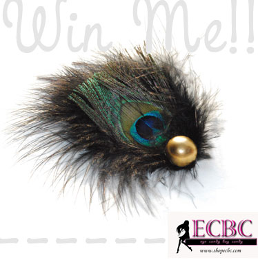 Win Cool Stuff: Peacock Feather Fascinator from ECBC