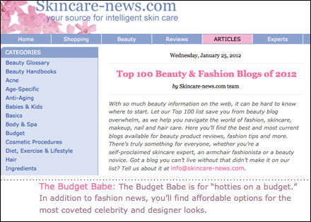 Top 100 Beauty and Fashion Blogs of 2012 by Skincare News