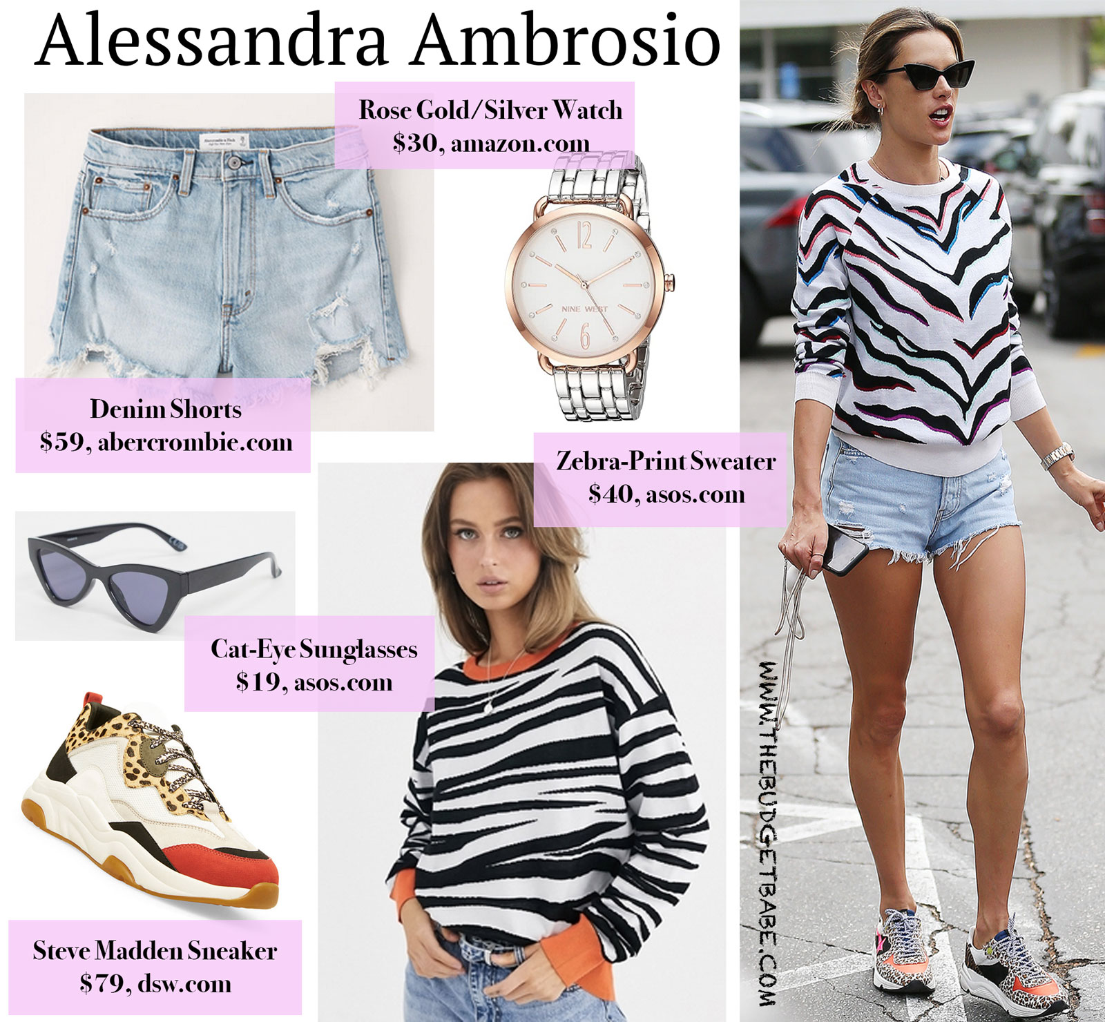 Alessandra Ambrosio Zebra Sweater Look for Less