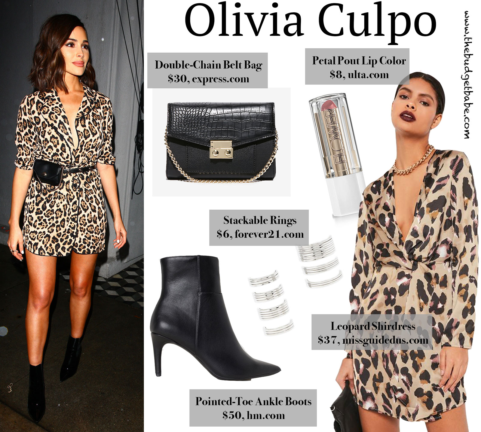 Olivia Culpo Leopard Dress Look for Less